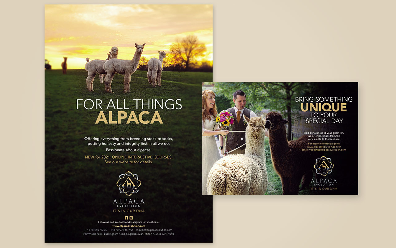 Print advertising campaign